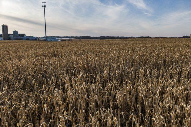 poljoprivreda blaga zima