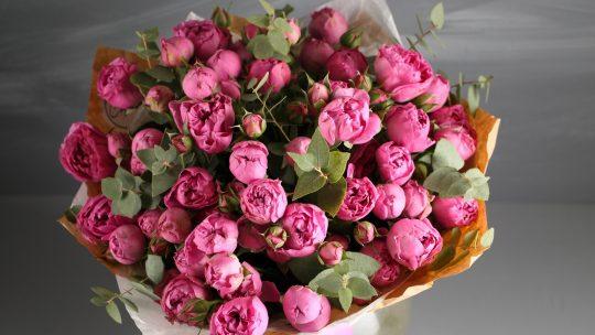 Cveće u vazi