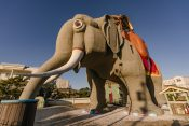 slon-kuća