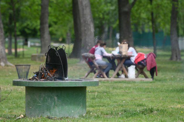 krpelji u Beogradu