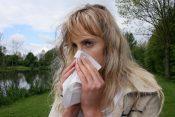 najveći alergeni u srbiji