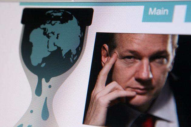WikiLeaks, Vikiliks