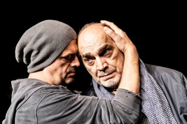 Predstava Voz, Sergej Trifunovic Voja Brajovic