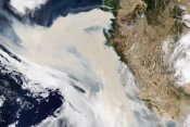 Foto: NASA Earth Observatory images by Lauren Dauphin