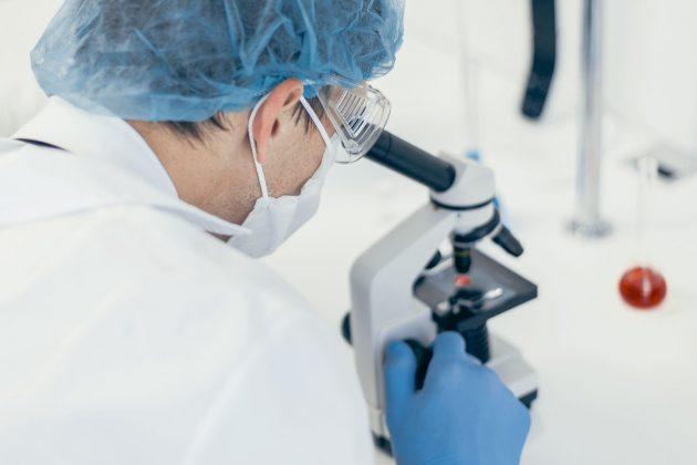 Korona pod mikroskopom