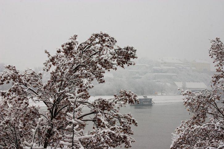 Novi Sad; zima; sneg