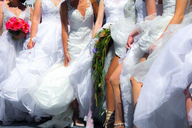 bela venčanica