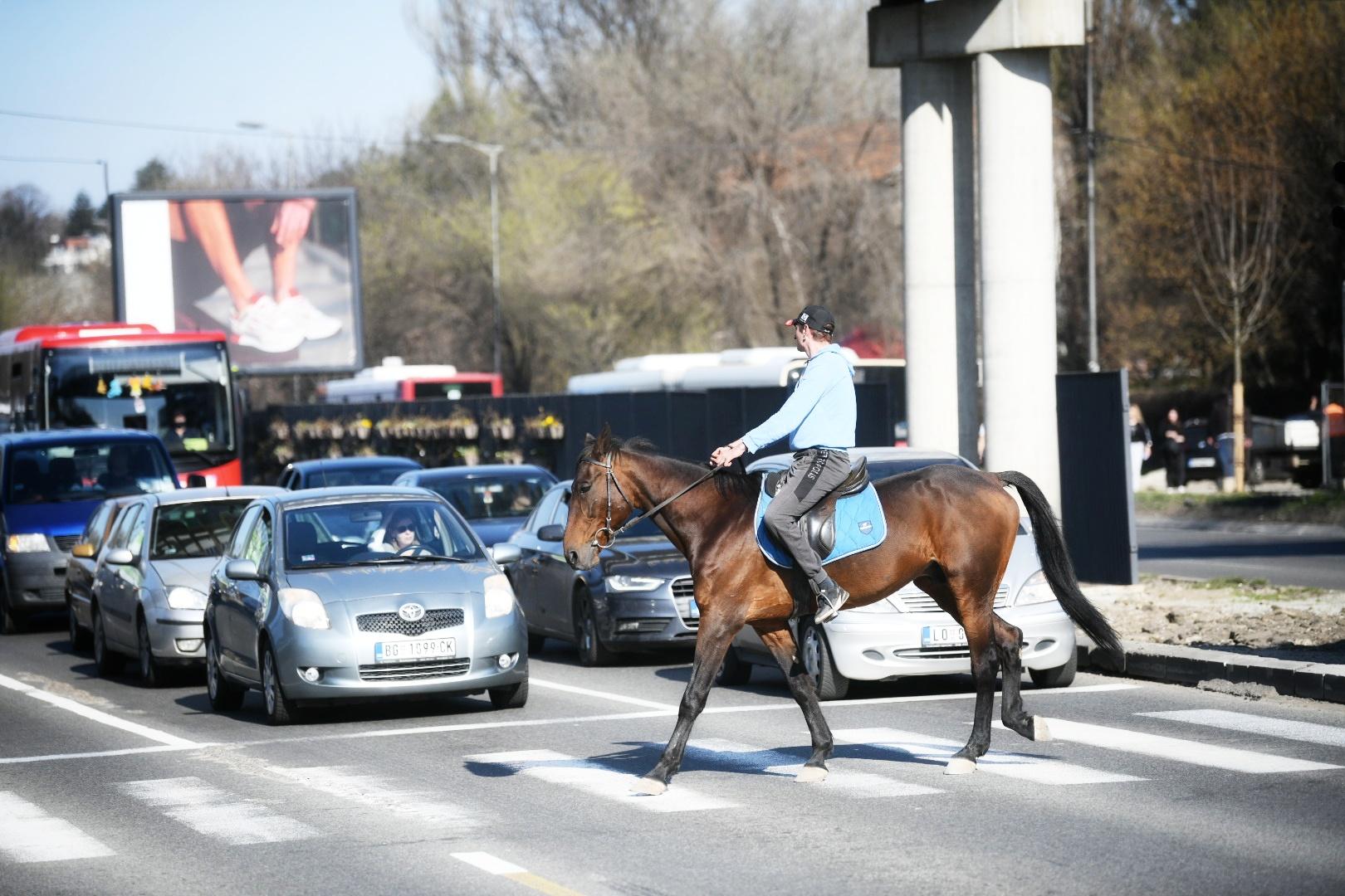 Konj, Ada Ciganlija, ulica, pasarela, pešački most