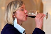 koje vino je najzdravije