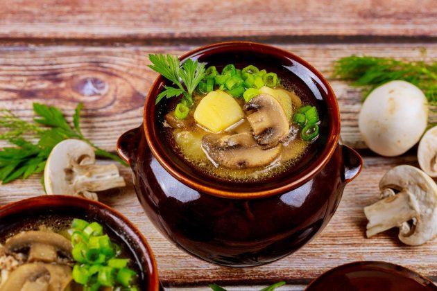 pileća ragu supa