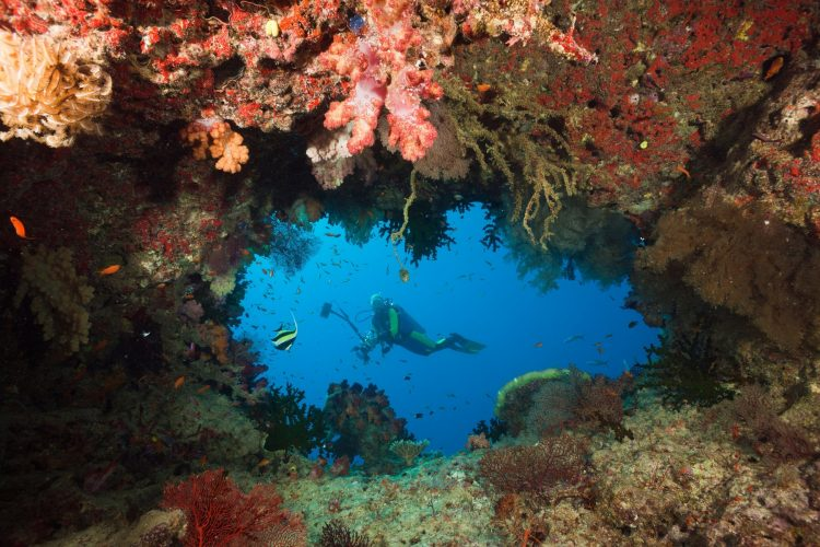 ronjenje; Fidži
