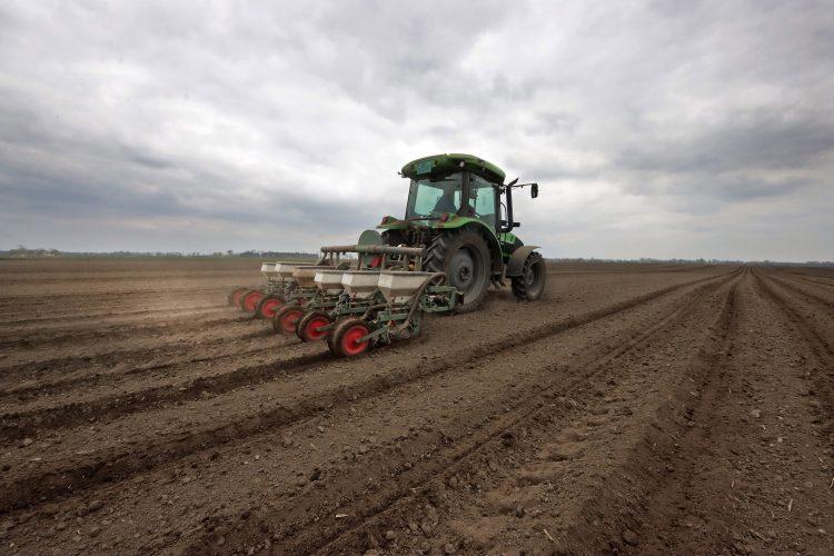 Kukuruz setva traktor agrar poljoprivreda