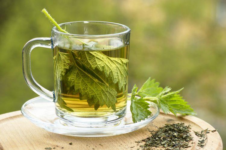 Kopriva, čaj od koprive