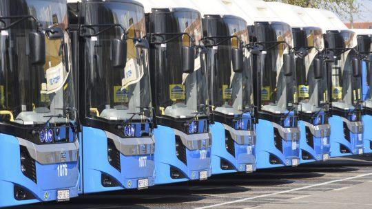 Novi Sad novi autobusi gradski prevoz