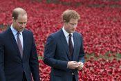 Princ Vilijam i princ Har