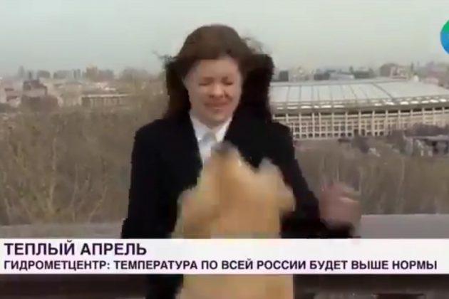 Rusija, novinarka, pas, mikrofon, uključenje