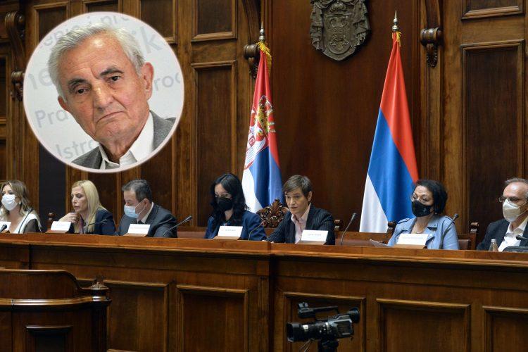 Sednica Vlade, Ana Brnabić, Ljubomir Madžar