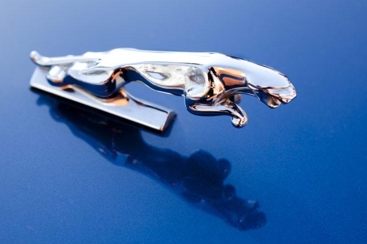 auto, jaguar, znak