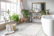 biljke za kupatilo