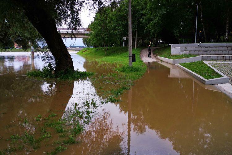 Cacak poplave