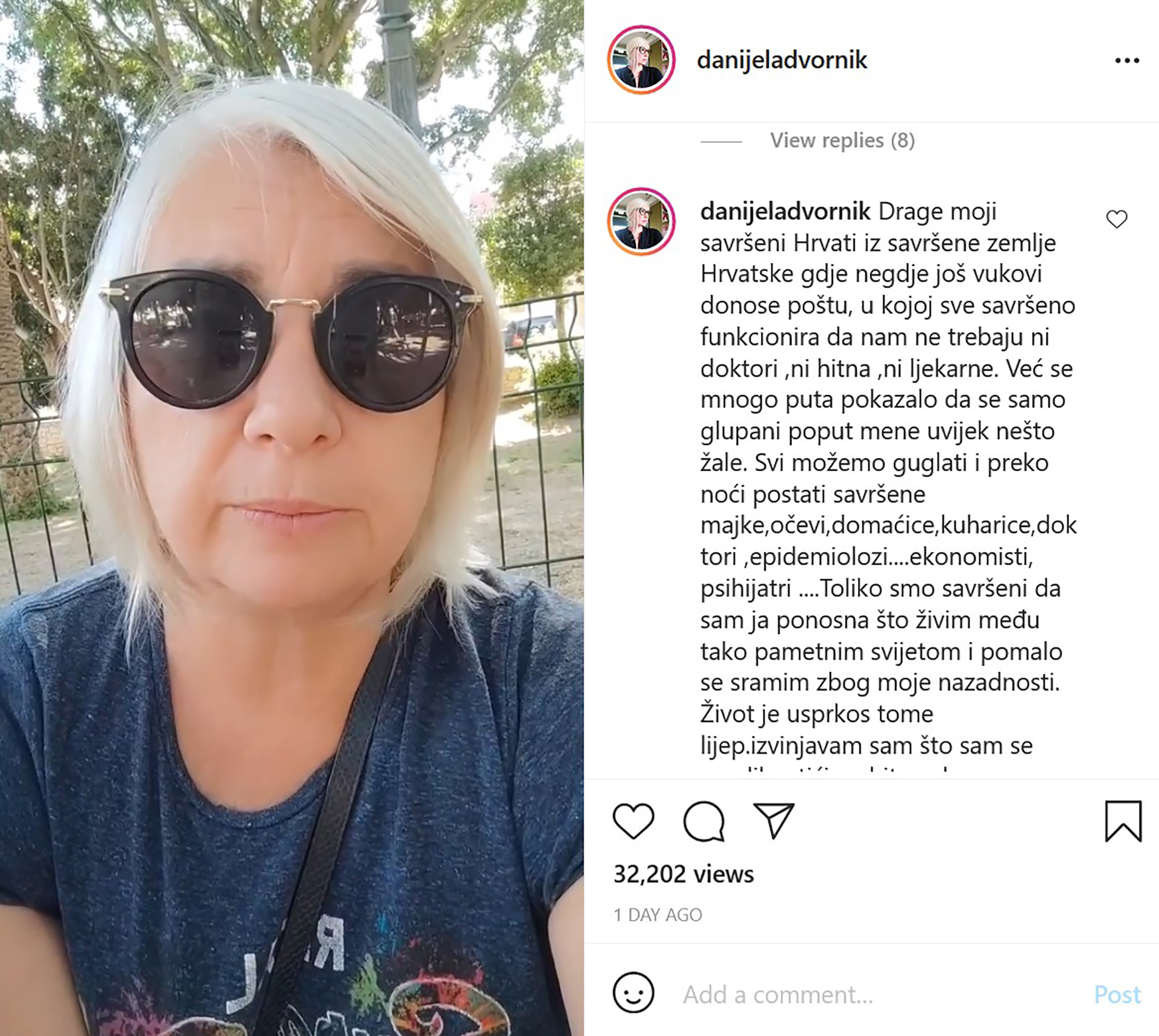 Danijela Dvornik, komentar, instagram