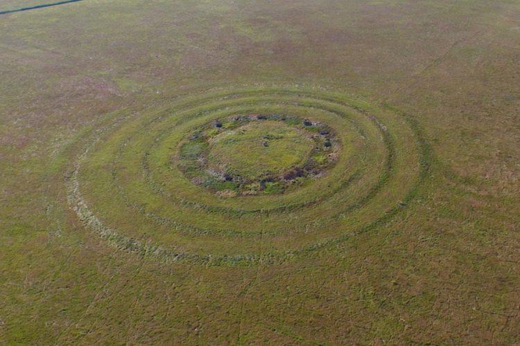 Misteriozni krugovi u Vršcu