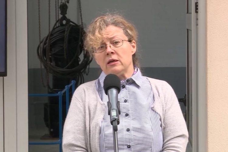Neda Maletić, Obrenovac, sistem za odbranu od poplava