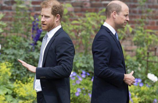Princ Hari i princ Vilijam