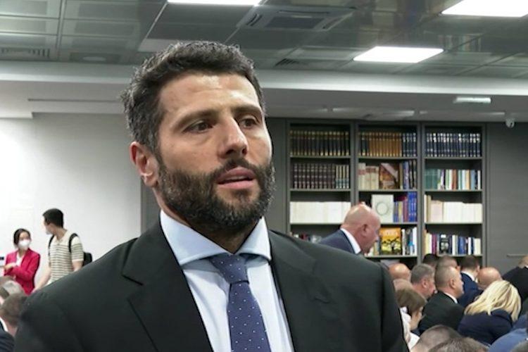 Aleksandar Šapić izjava