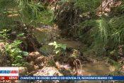 Barajevo voda, Meštani Barajeva tvrde Lipovičku šumu natapa voda iz gradskog vodovoda, prilog, emisija Pregled dana