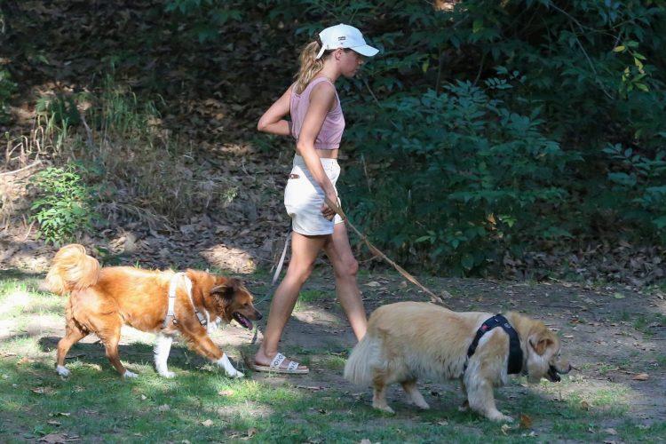 oglas banovo brdo šetanje pasa