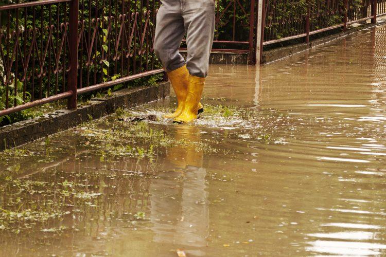 Poplava, voda
