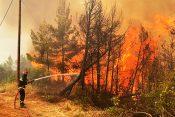 Srpski vatrogasci gase požare na Eviji, u pomoć stigla i Helikopterska jedinica. Grčka, Srbija, požar, pomoć, vatrogasci