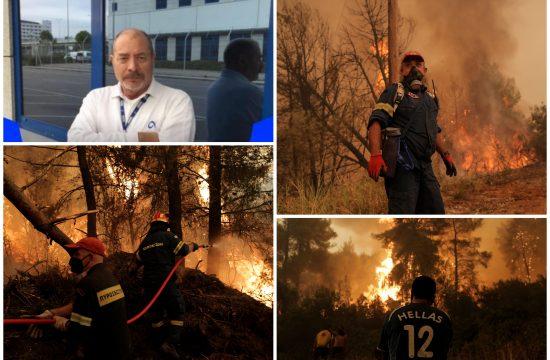 Požari, požar, Grčka, pilot, Stavros