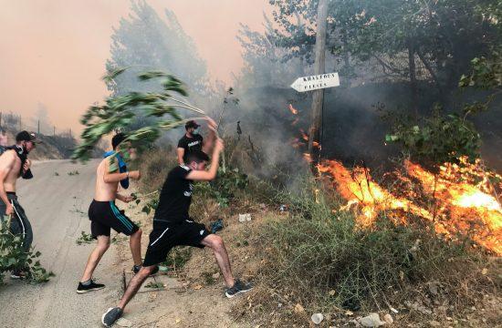 Alžir, požar