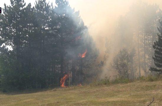 Prevencija najbolja zaštita šuma od požara