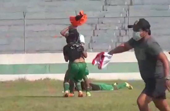 Roj pčela prekinuo fudbalsku utakmicu u Boliviji