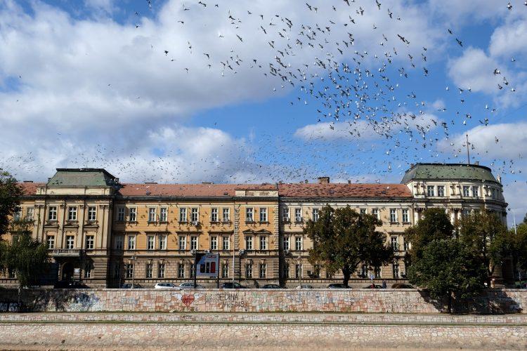 Univerzitet u Nisu, Nis zgrada