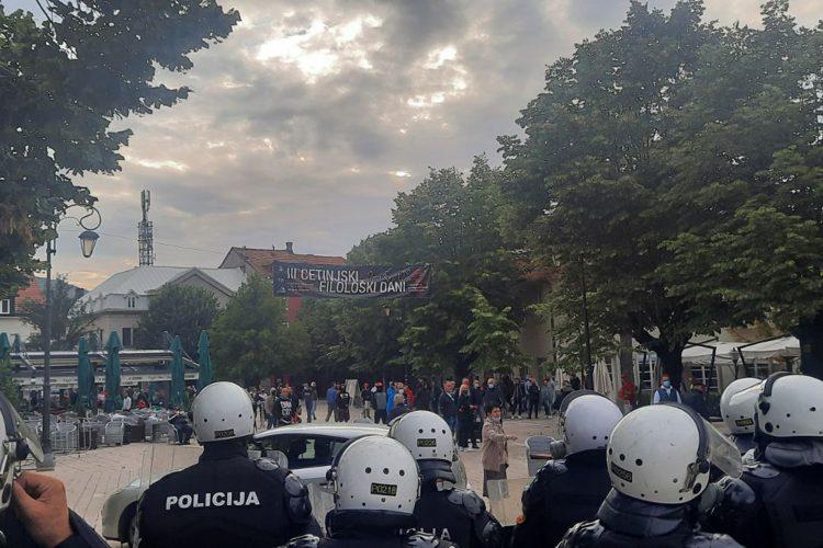 Cetinje protest