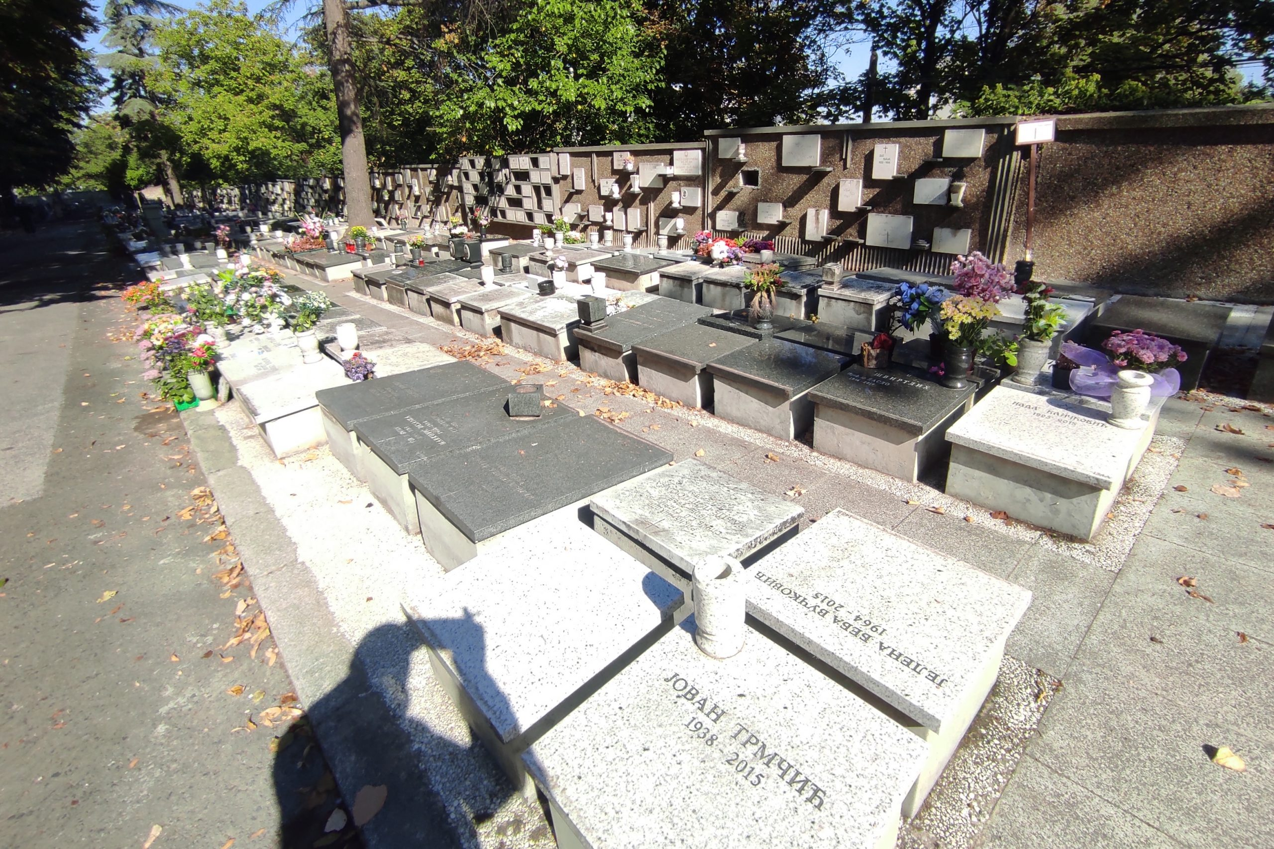 Novo groblje
